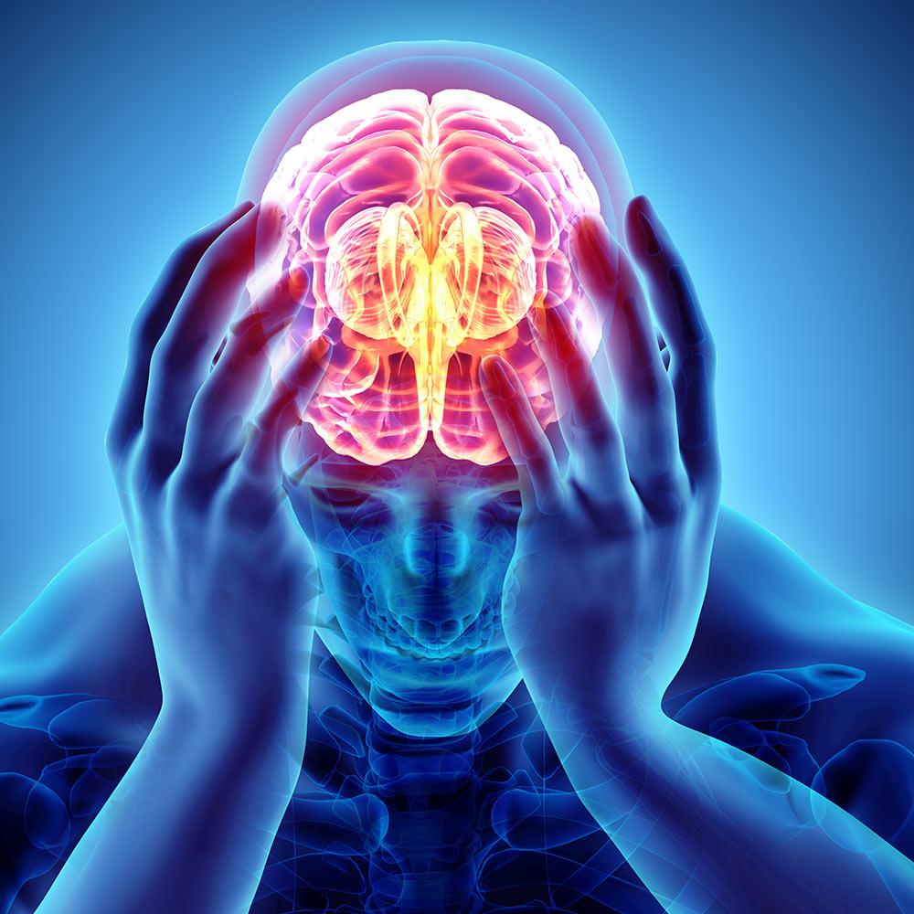 Schizophrenia - Chasing the Cure